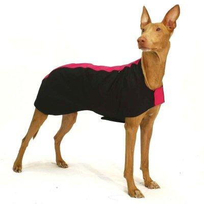 Sofa Dog - Miguel - Softshell Coat