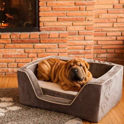 Snoozer Pet Products - Luxury Orthopedic Square Bed with Memory Foam - Laurel Cayenne