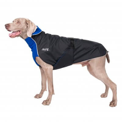 Chilly Dogs - Alpine Blazer - Waterproof Dog Coat - Long and Lean Breeds (sighthounds eo)