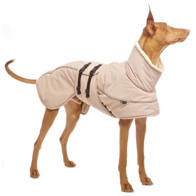 Sofa Dog - Aspen Plus - Warm Winter Jacket