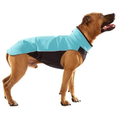 Sofa Dog - Hachico Bull - Waterproof Softshell Body