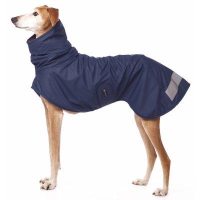 Sofa Dog - Michael Coolrain - Warm Raincoat