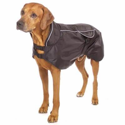 Sofa Dog - Poe - Honden regenjas met gaas voering