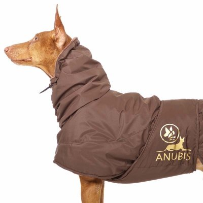 Sofa Dog - Anubis - Warme Winterjas