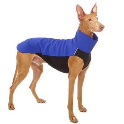 Sofa Dog - Hachico - Waterproof Softshell Body