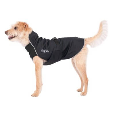 Chilly Dogs - Harbour Slicker - Waterproof Dog Coat - Long and Lean Breeds (sighthounds eo)