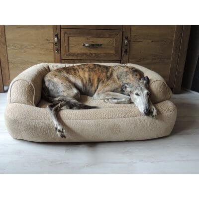 Snoozer Pet Products - Luxury Orthopedic Sleeper Sofa with Memory Foam - Piston Sand (Showdog)