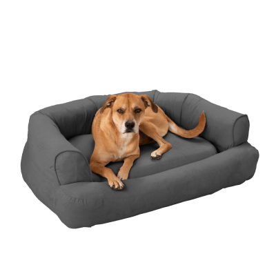 Snoozer Pet Products - Luxury Orthopedic Sleeper Sofa with Memory Foam - Anthracite