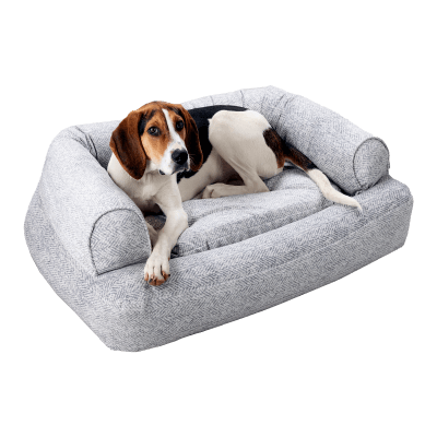 Snoozer Pet Products - Luxury Orthopedic Sleeper Sofa with Memory Foam - Palmer Dove (Showdog)