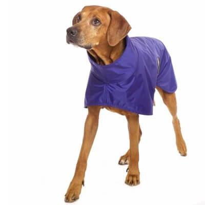 Sofa Dog - Michael RR Rain - Waterproof raincoat