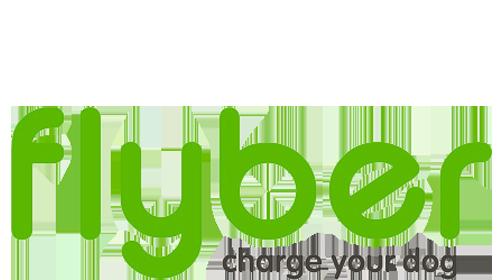 FLYBER logo