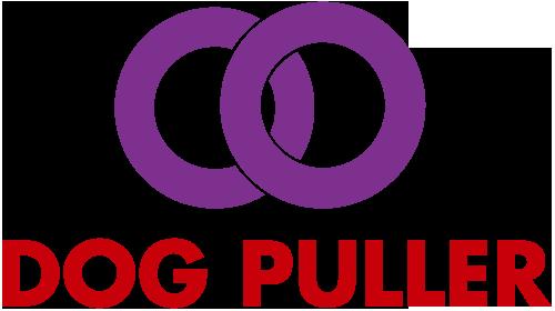 PULLER Logo